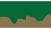 Ali Wales Tree Solutions Logo