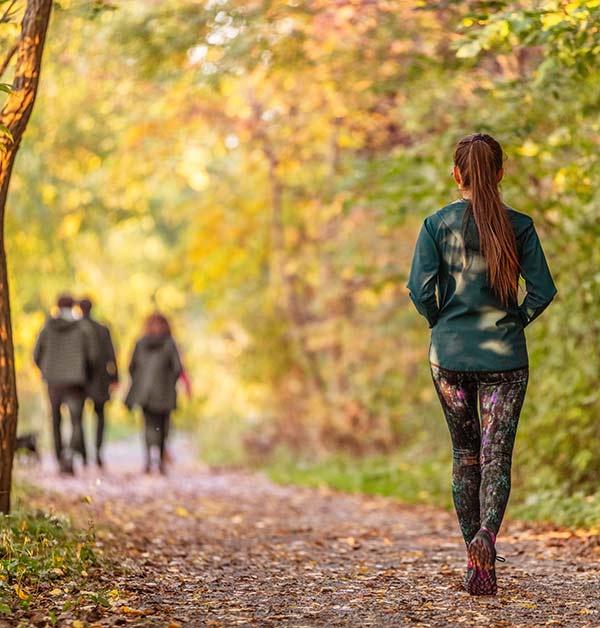 Social Woodland Management